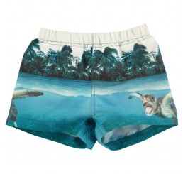 Molo Newton swimshorts  Singing Turtle