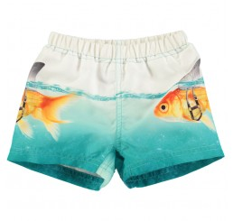 Molo Newton swimshorts  Scary Fish