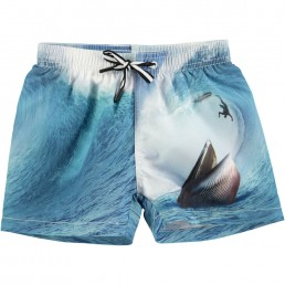 Molo Kids Niko Swimshort Surfer meets Whale