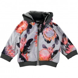 Molo High Jacket Sugar Flowers