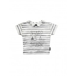 Sproet & Sprout T-Shirt Sharp as a Shark - Stripe