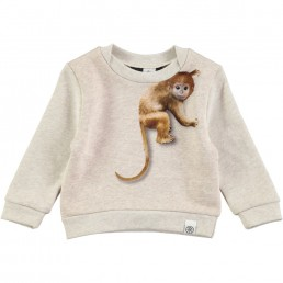 Molo Dude sweater Climbing monkeys