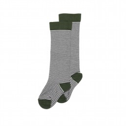 Mingo Knee socks Striped/forest green