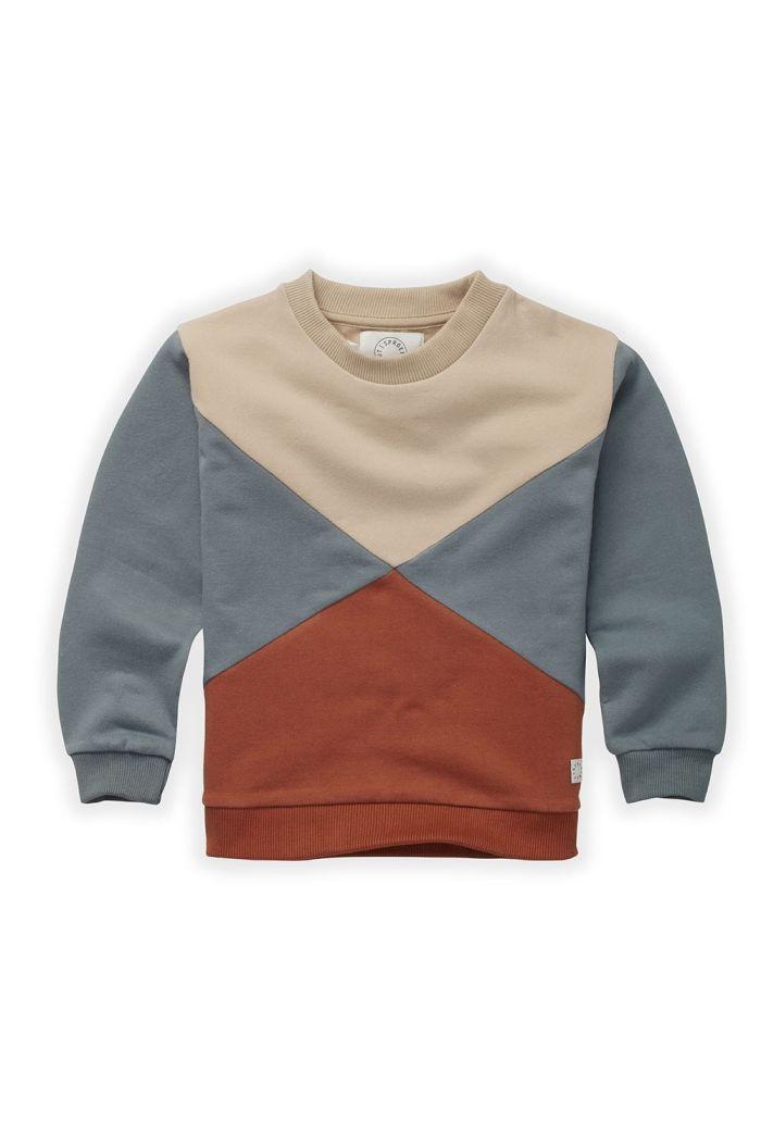 Sproet & Sprout Sweatshirt Colorblock Auburn_1