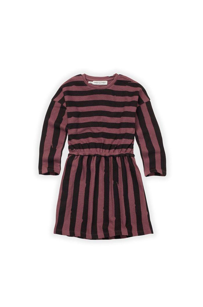 Sproet & Sprout Skater Dress Painted Stripe Black/Fig_1