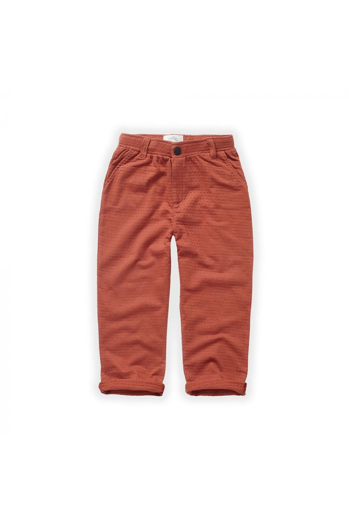 Sproet & Sprout Chino Auburn_1