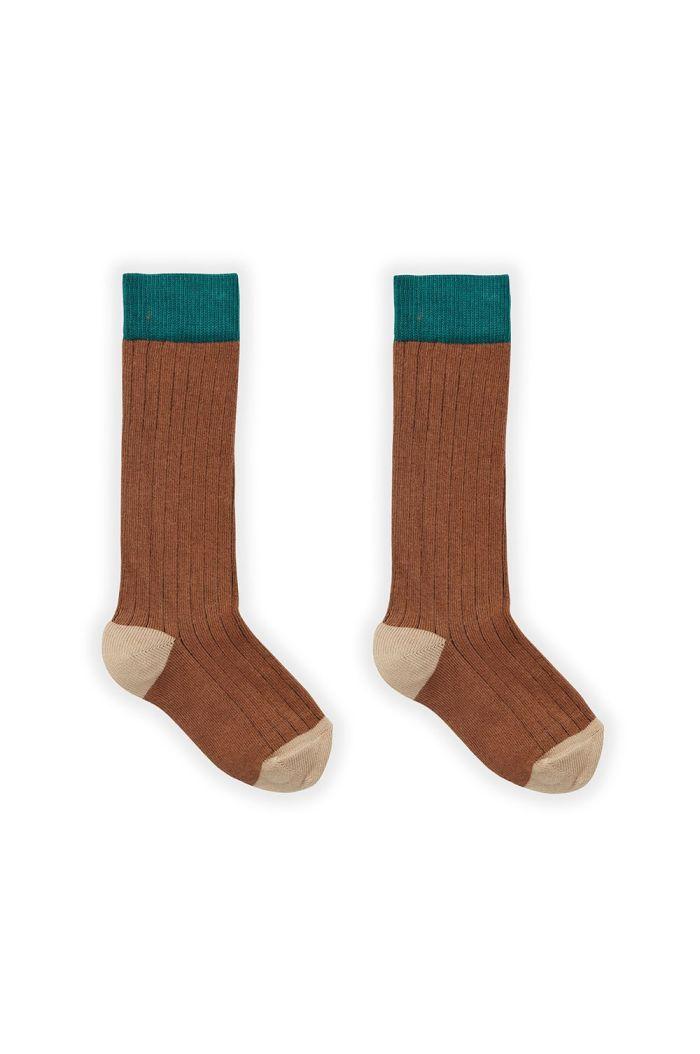 Sproet & Sprout Sock Colorblock Auburn_1