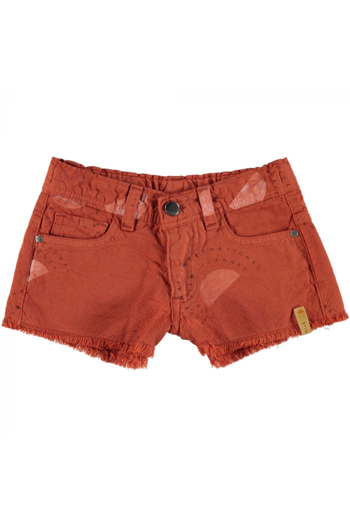 Piupiuchick Shorts Garnet  Festival all over_1