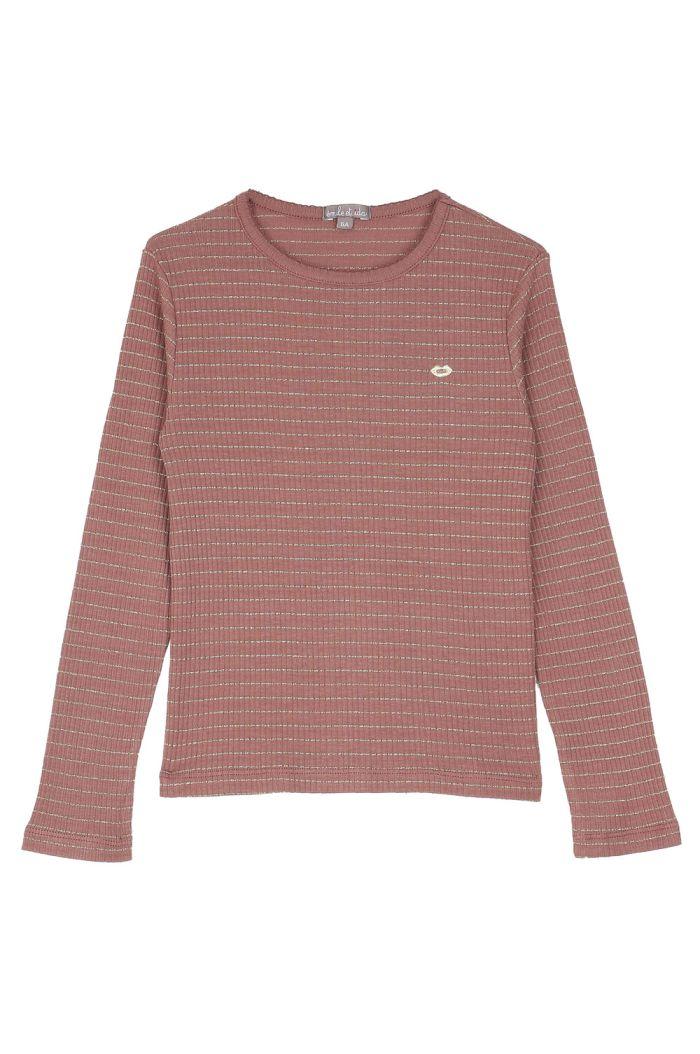 Emile et Ida Tee Shirt Glitter striped Raisin_1