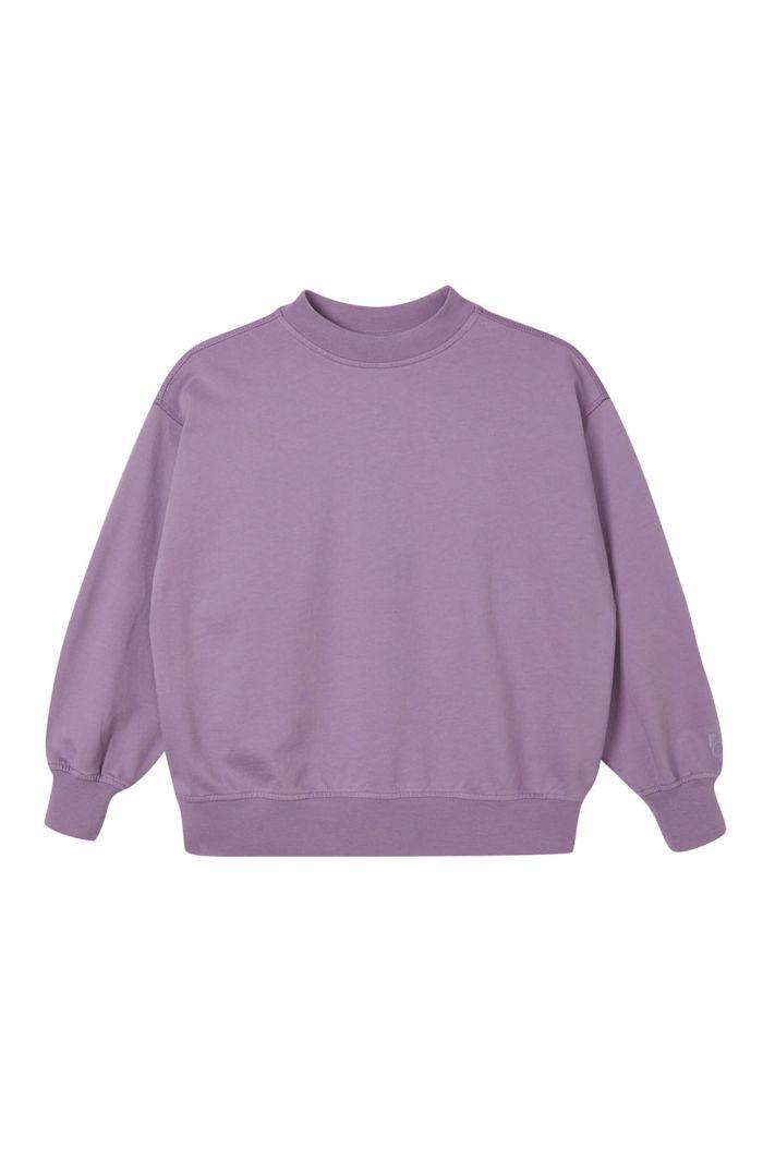 Main Story Oversized Sweatshirt Grapemist_1