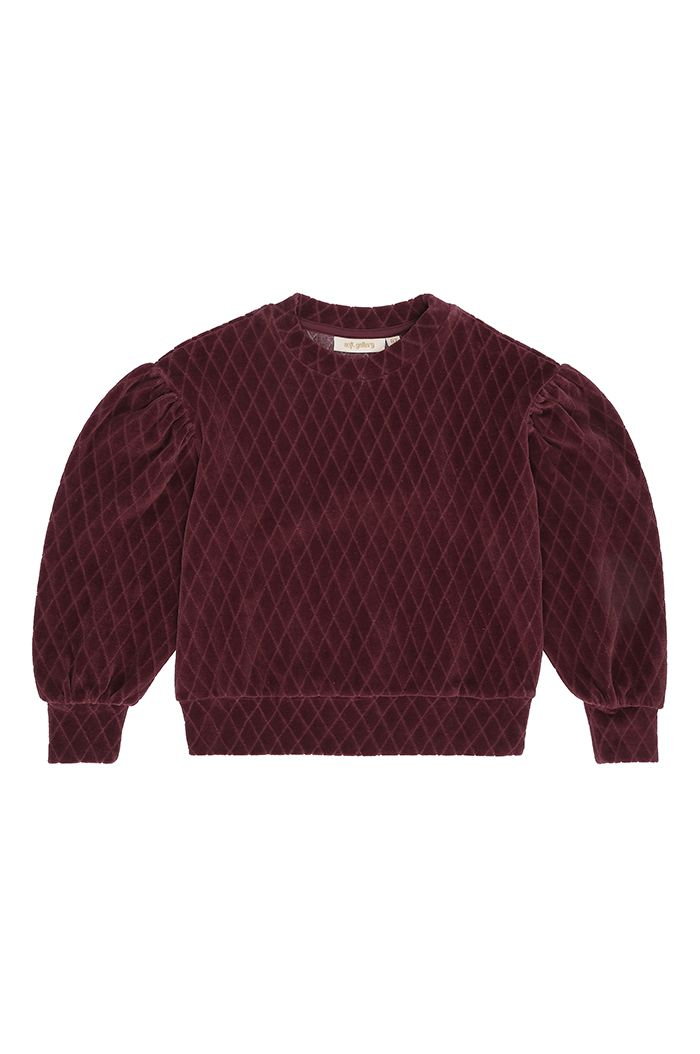Soft Gallery Geneva Sweatshirt Rose Brown_1