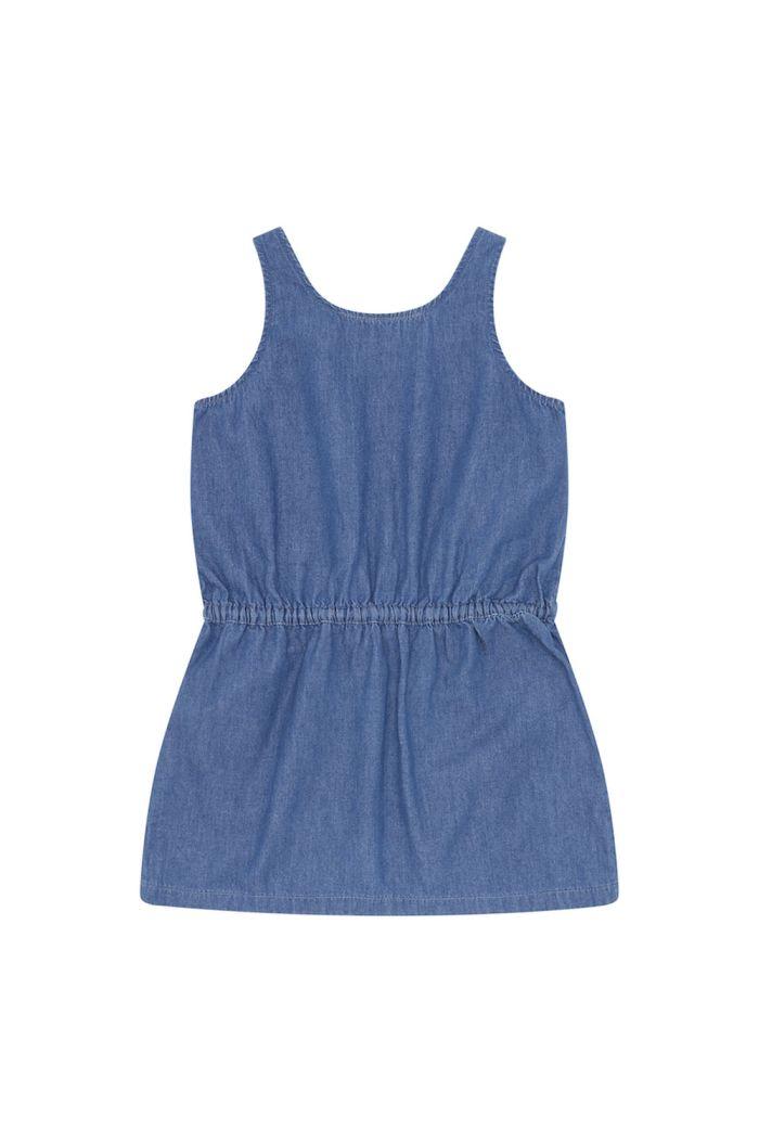Soft Gallery Darla Dress Denim Blue_1