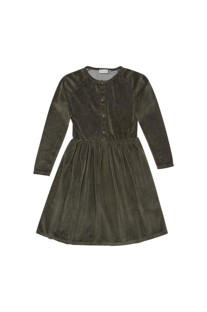 Blossom Kids Velvet dress Sage_1