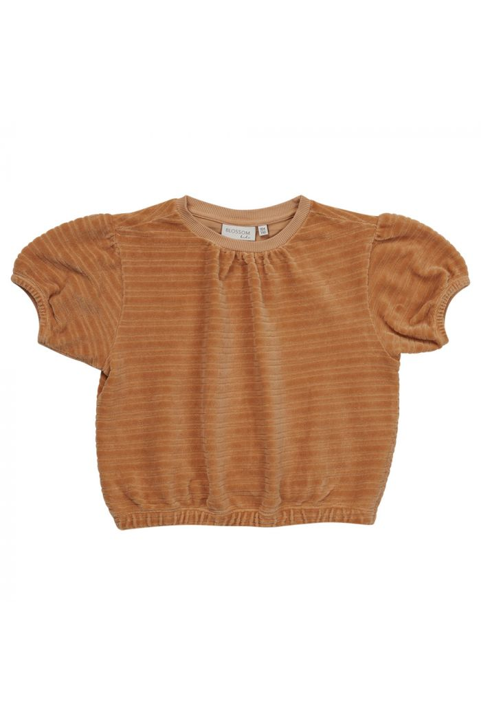 Blossom Kids Velvet top Honey_1