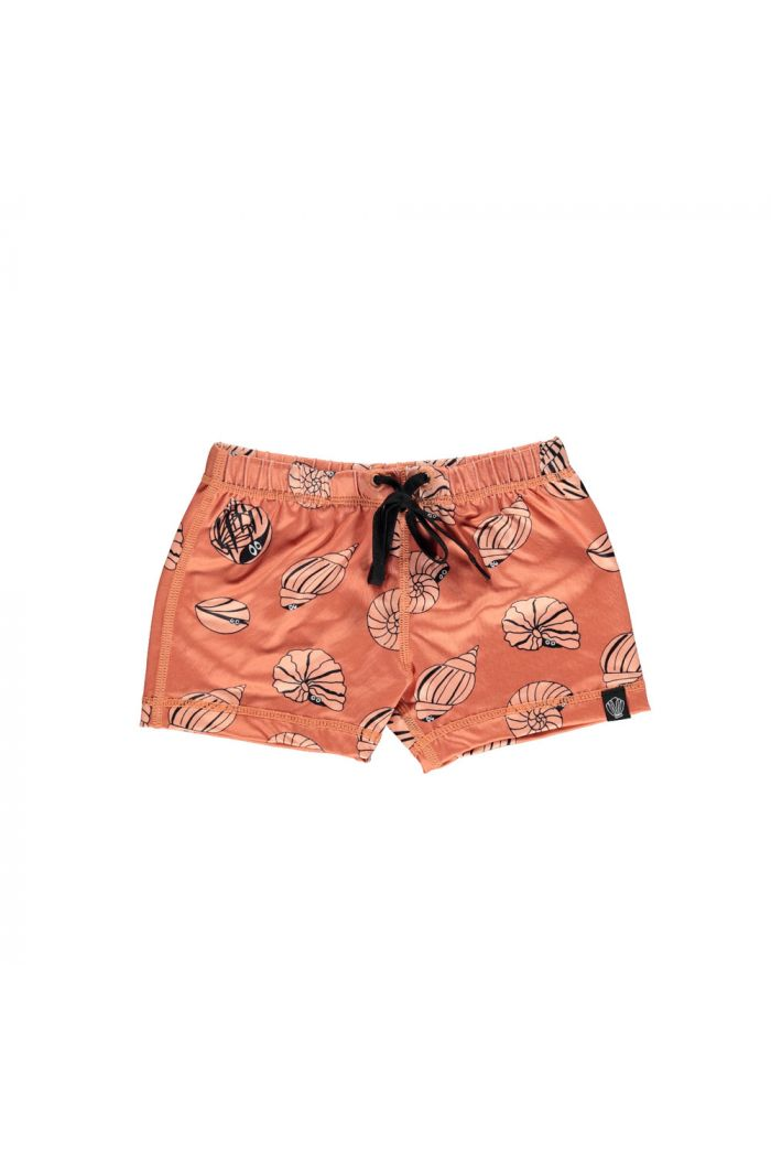 Beach & Bandits Shello! Swimshort Clay_1