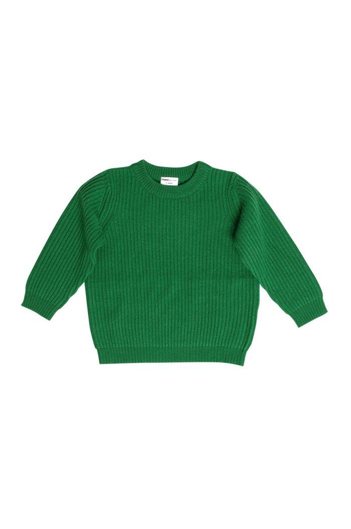 Maed for Mini Sweater Leafy Leech_1