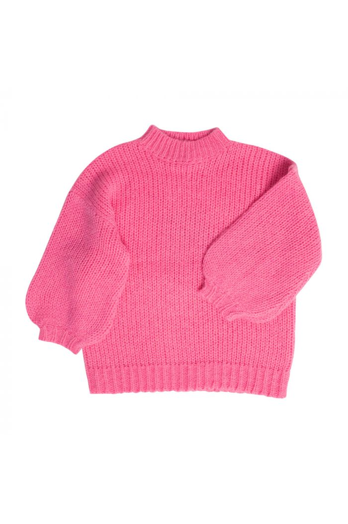 Maed for Mini Sweater Rosy Ringtail_1