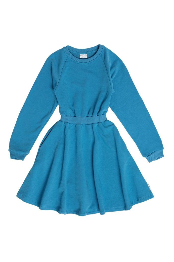Maed for Mini Dress Flamboyant Falcon fleece_1