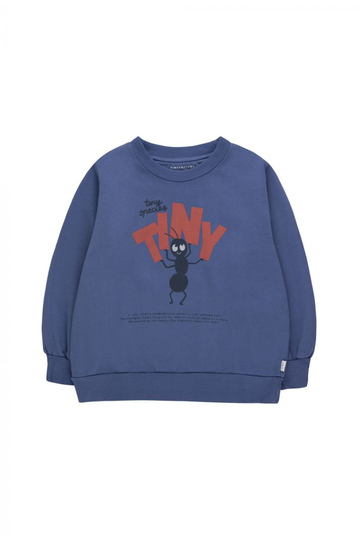 Tinycottons Tiny Fortis Formica Sweatshirt Soft Blue/Red_1