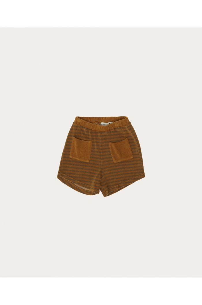 The Campamento Brown Stripes Short Brown_1