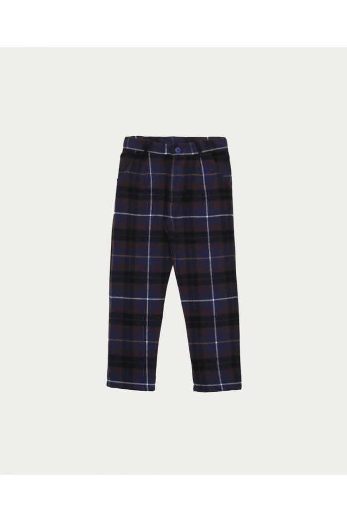 The Campamento Pants Blue Checked_1