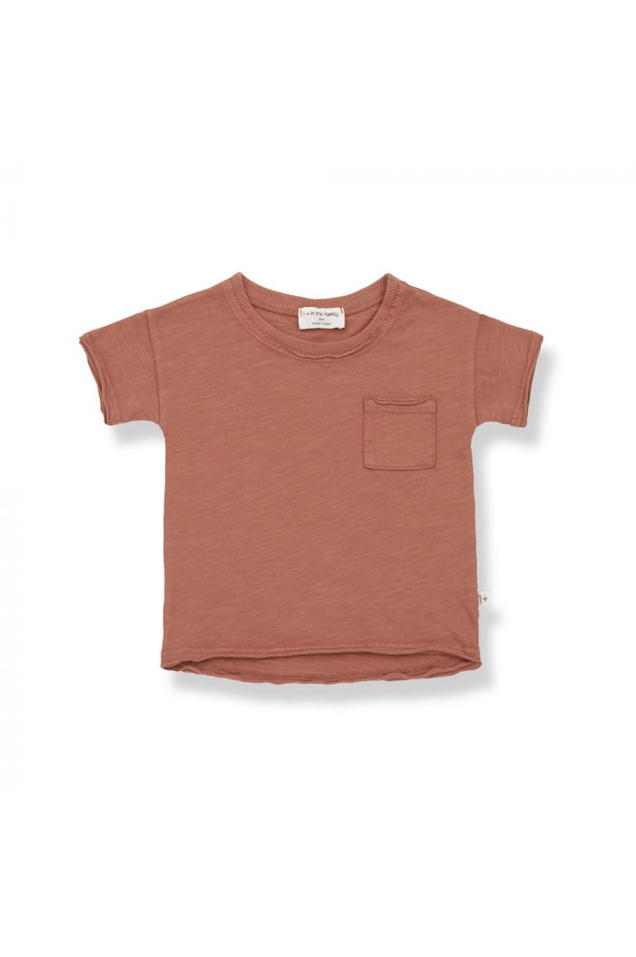 1+ in the family NANI Shortsleeve T-Shirt Roibos_1