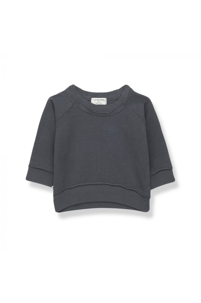 1+ in the family TRISTAN Sweatshirt Anthracite_1