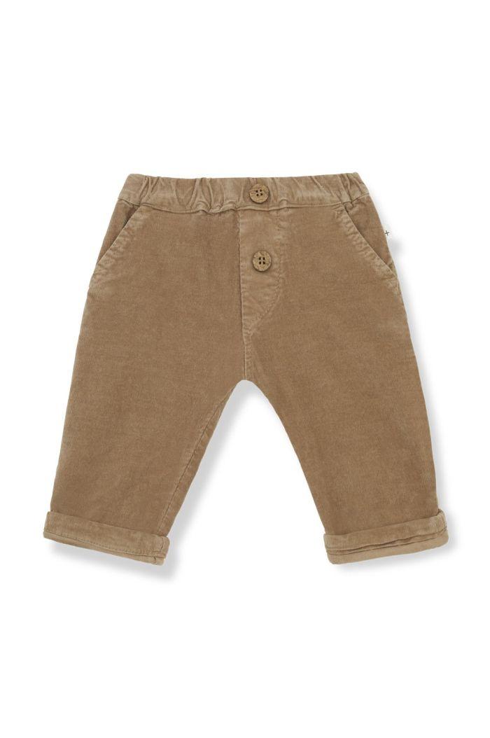 1+ in the family ARTAL pants Brandy_1