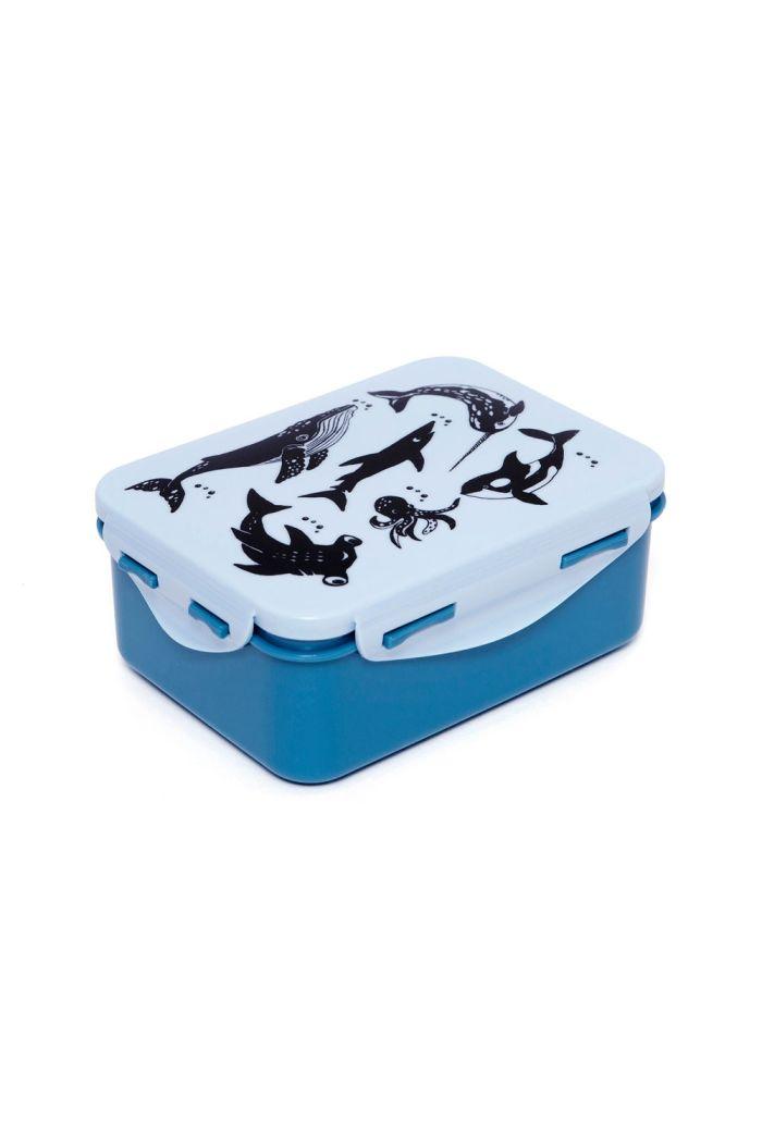 Petit Monkey Lunchbox Sea Animals Blue _1
