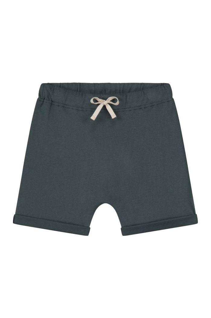 Gray Label Shorts Blue Grey_1