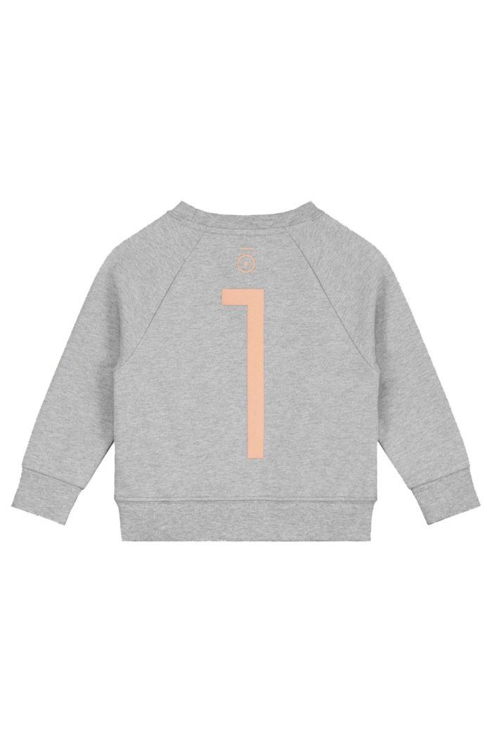 Gray Label Anniversary Sweater  Grey Melange - 1 yr_1