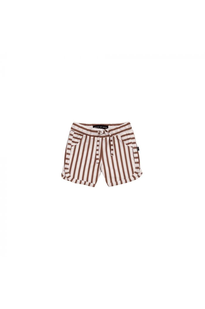 House Of Jamie Swim Gym Shorts Baked Clay Stripes _1