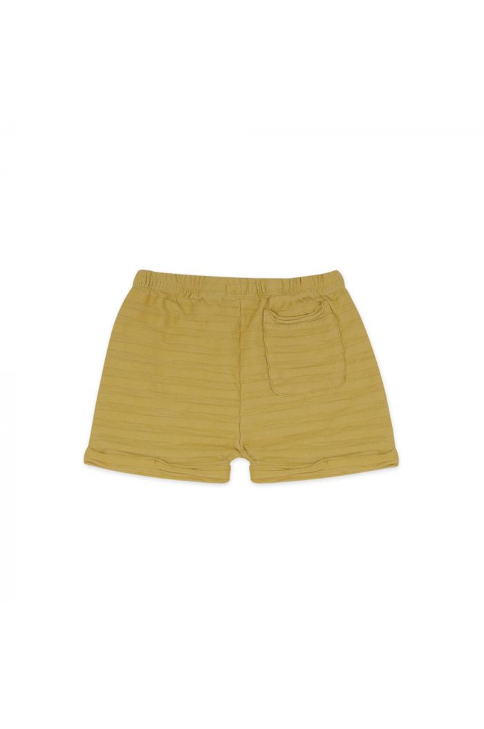 Phil&Phae Summer shorts tonal stripe avocado_1
