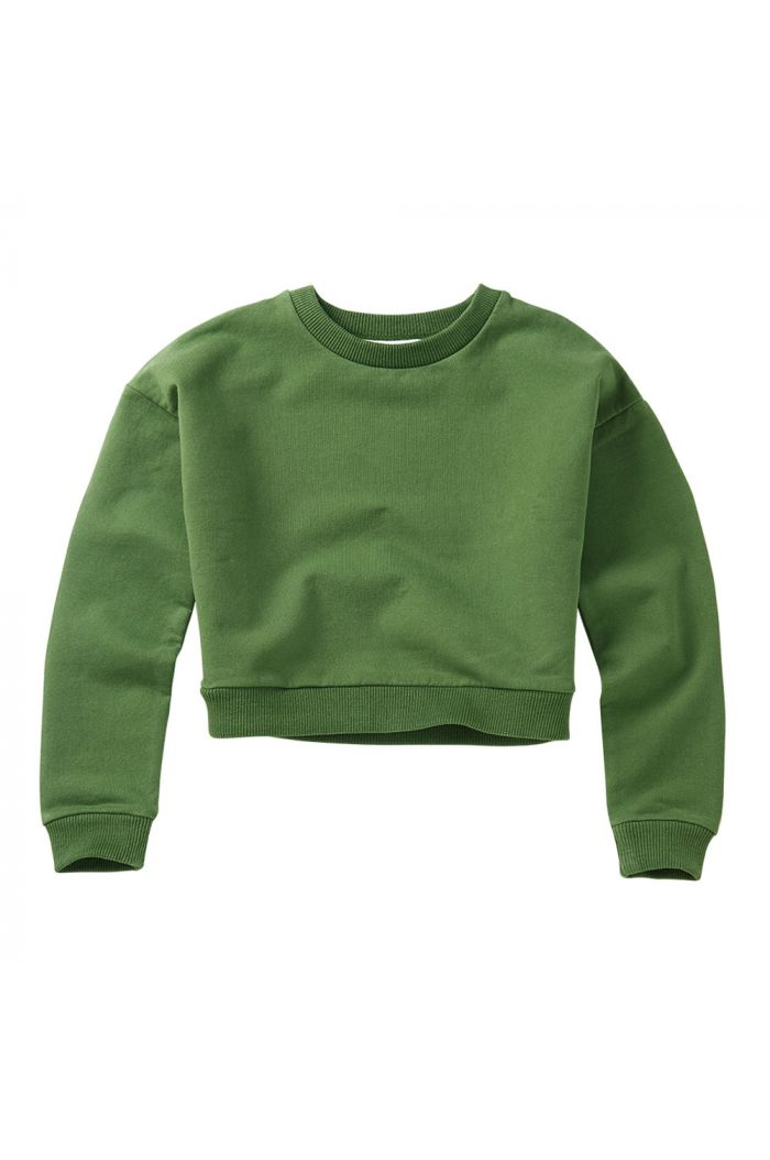 Mingo Cropped Sweater Moss Green_1