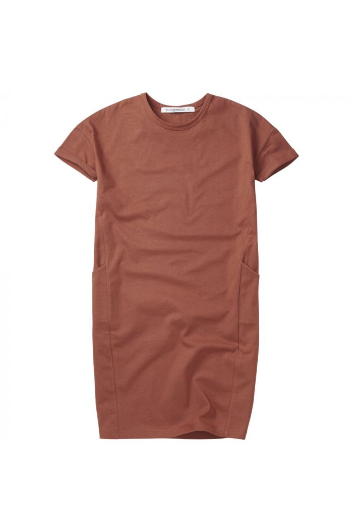 Mingo T-shirt Dress Sienna Rose_1