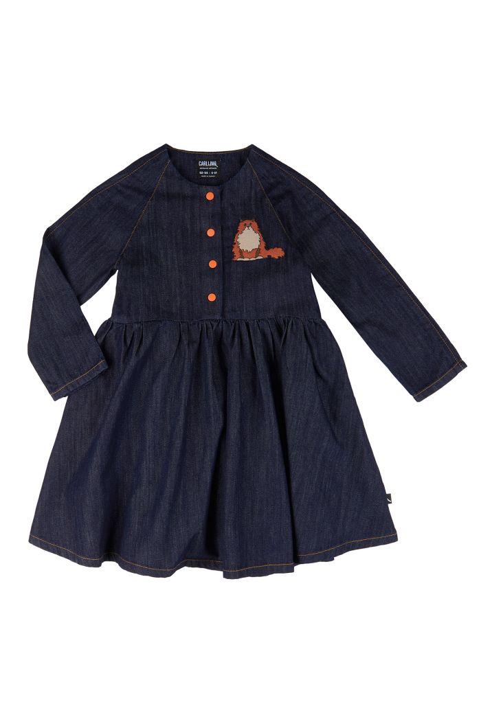 CarlijnQ 3 Button Oversized Dress + Embroidery  Loulou - Denim_1