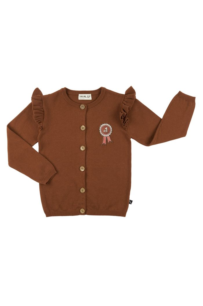 CarlijnQ Cardigan Wings + Embroidery  Rosette_1