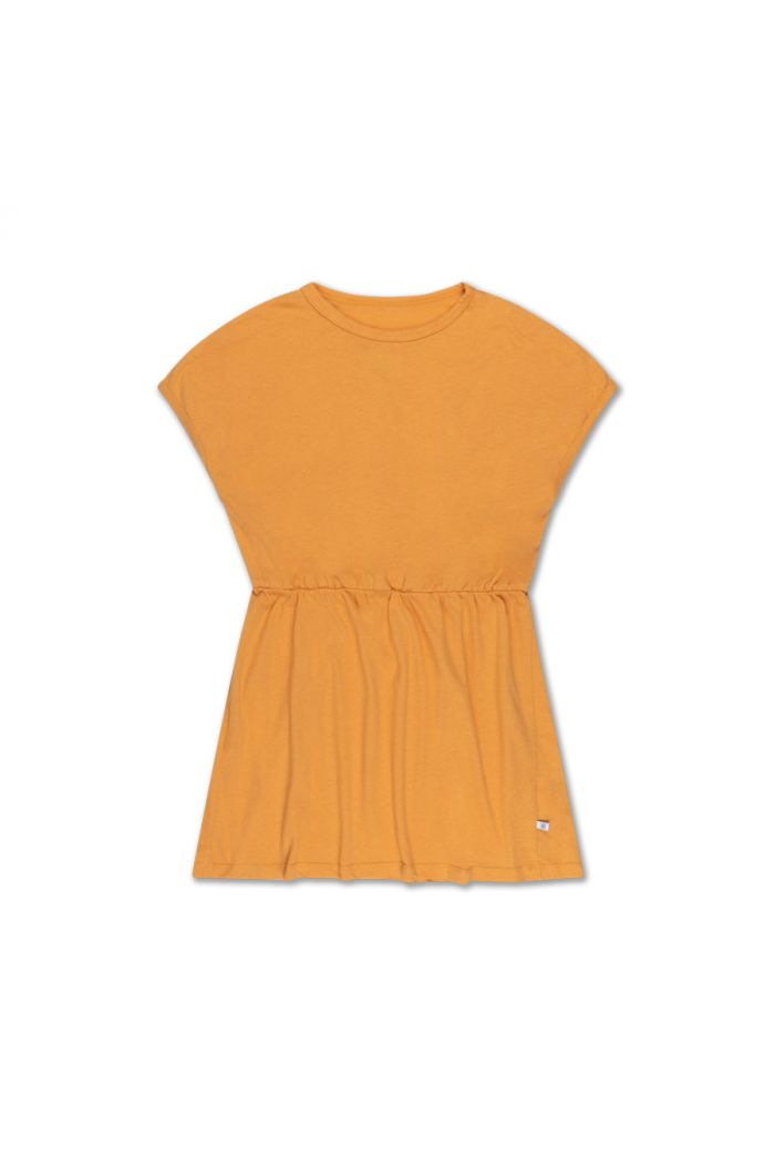 Repose AMS skater dress apricot caramel