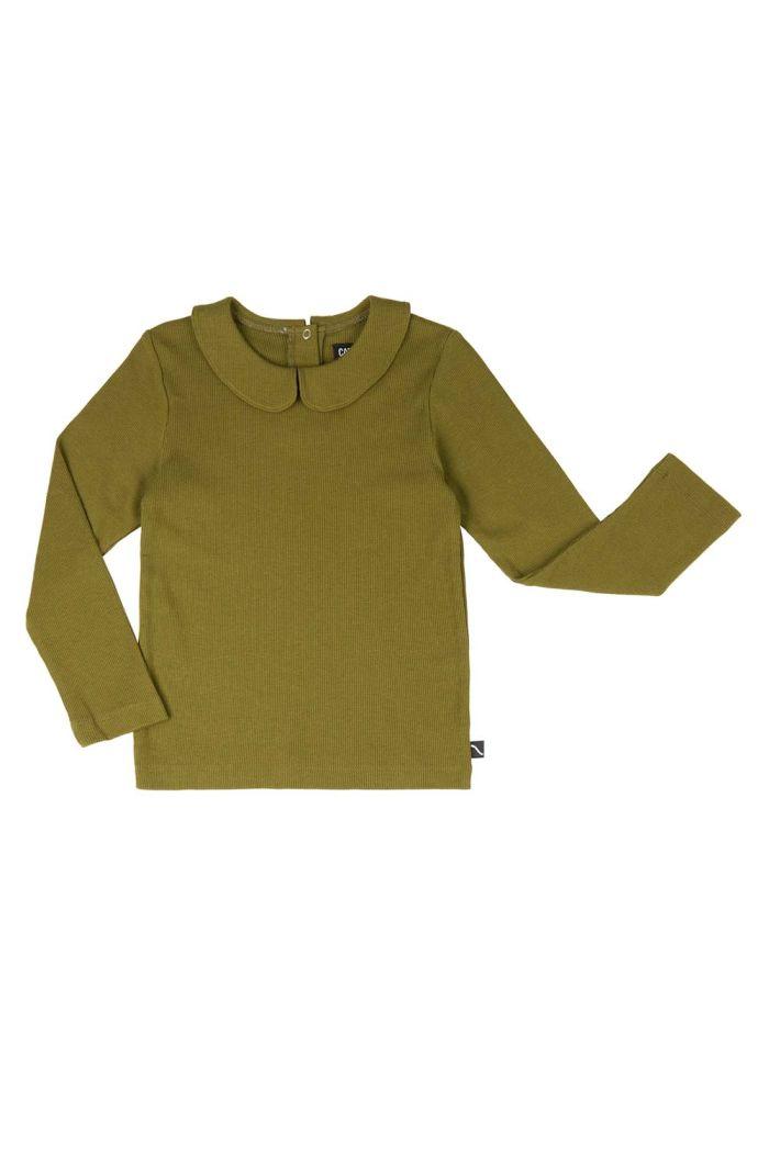 CarlijnQ Basics - Longsleeve Collar  Green_1
