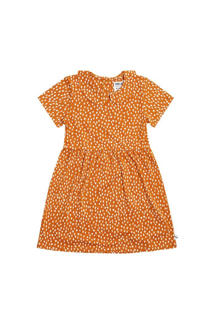 CarlijnQ Collar Dress Short Sleeves Golden Sparkles_1