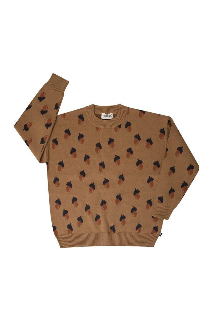 CarlijnQ Knitted Sweater Acorn_1