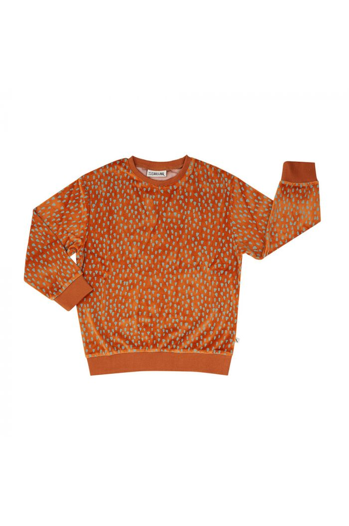 CarlijnQ Velours Sweater Mountain Air Sparkles_1