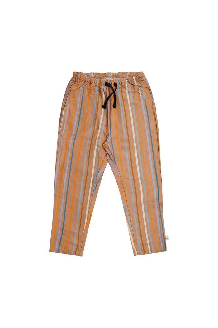 CarlijnQ Chino Multi color stripes_1