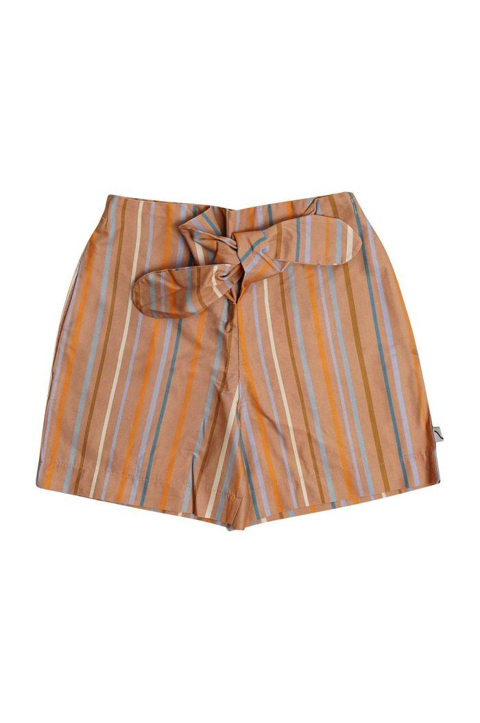 CarlijnQ Paperbag Shorts Multi-color stripes_1