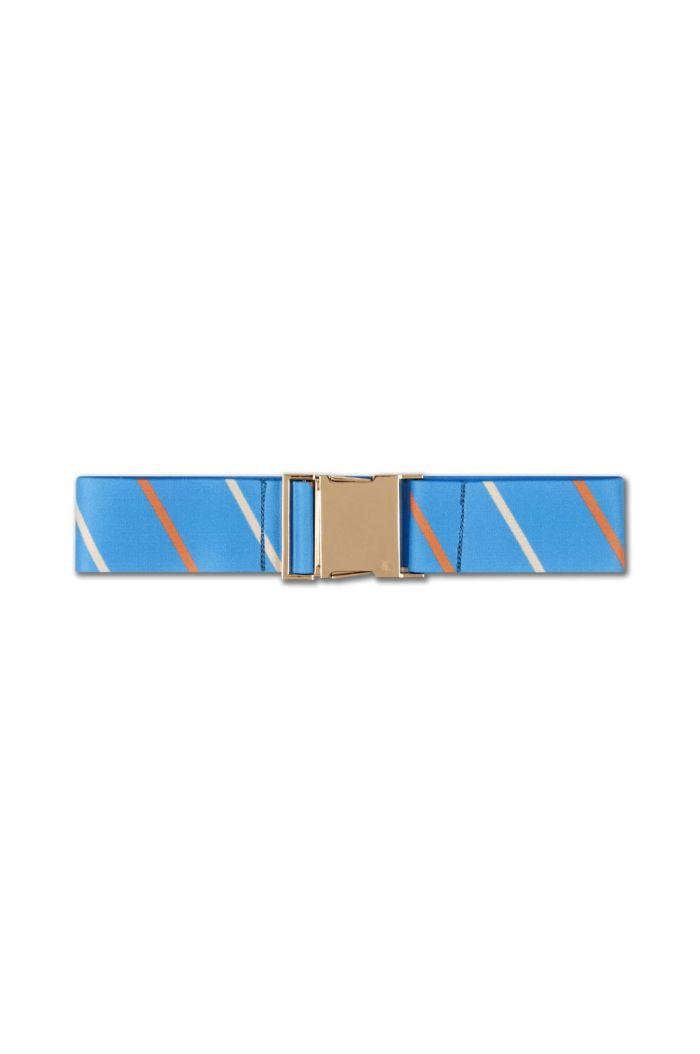 Repose AMS Belt Brilliant Diagonal Stripe_1
