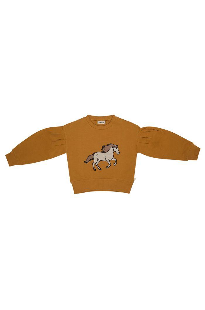 CarlijnQ Girls Sweater Wild Horse_1
