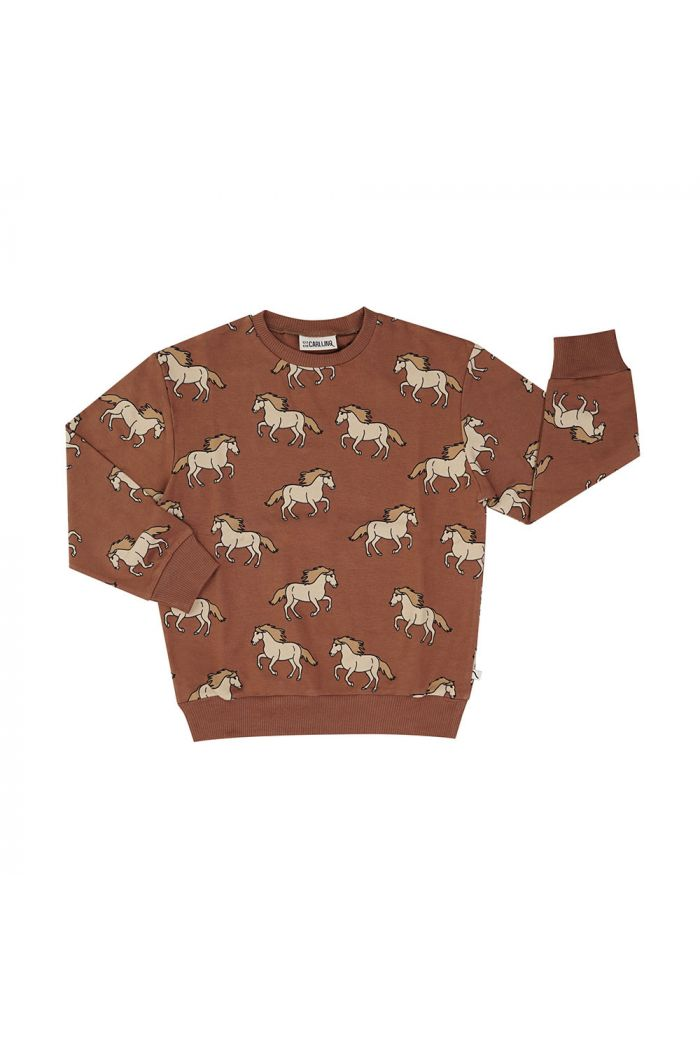 CarlijnQ Sweater Wild Horse_1