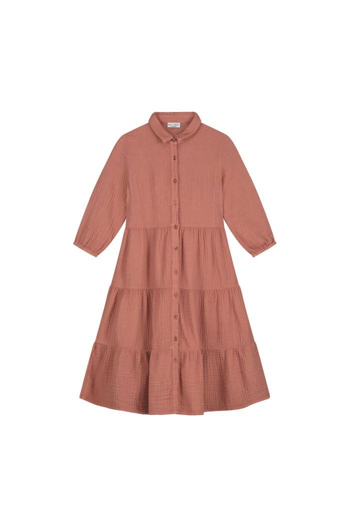 Daily Brat Ella dress Summer Cinnamon_1