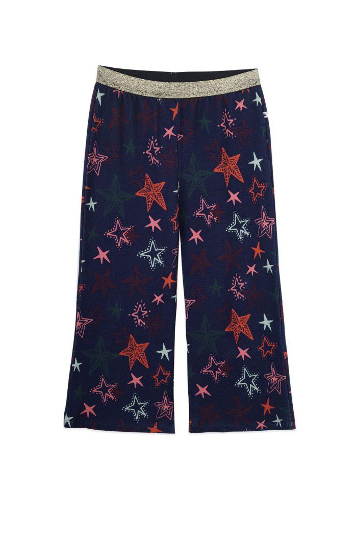 Ammehoela Fenna pants Star_1