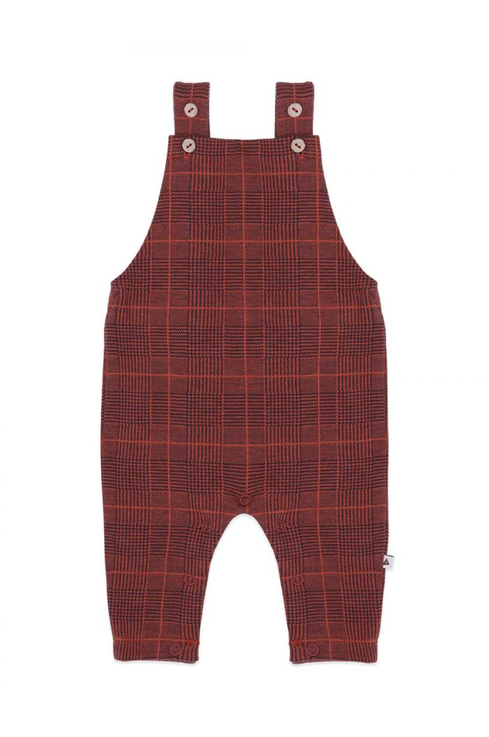 Ammehoela Dunde dungaree Navy-Check_1